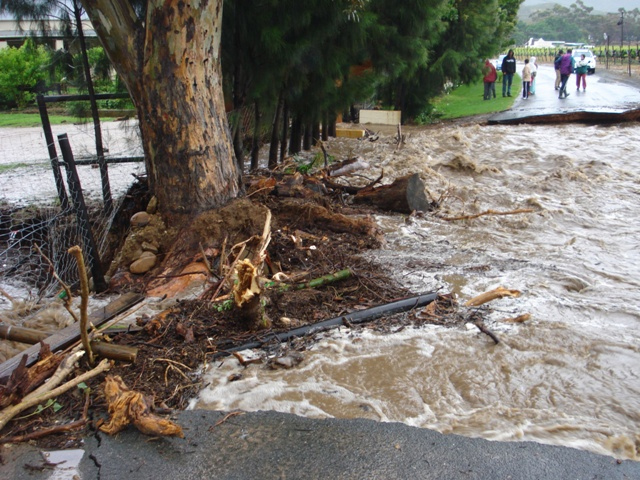 Disaster and conservation management