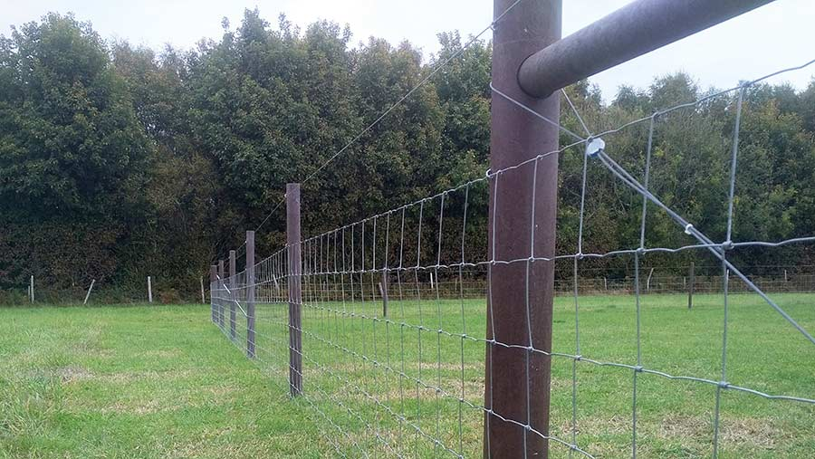 Errect and maintain wire fencing