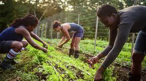Human Resource in Agriculture