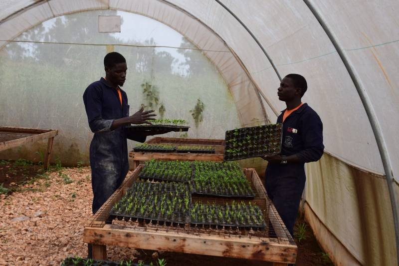 Understand Agricultural production systems
