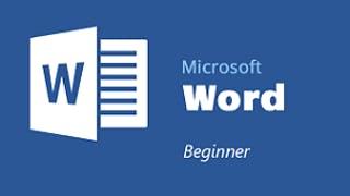 Basic Microsoft Word